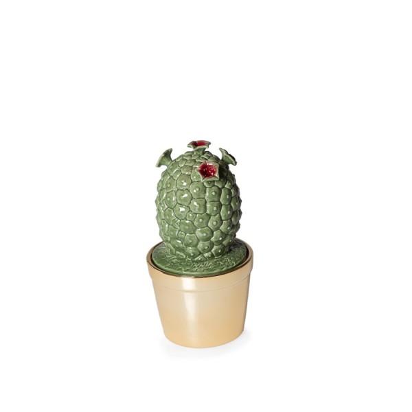 Objektdose Kaktus